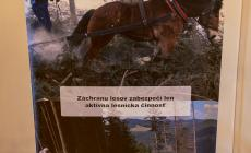 putovna_vystava_6.jpg